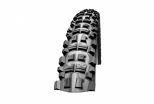 Schwalbe Big Betty Downhill